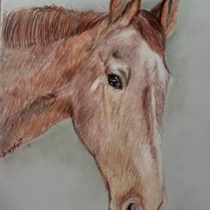 zeichnung-KD487.2-Medium