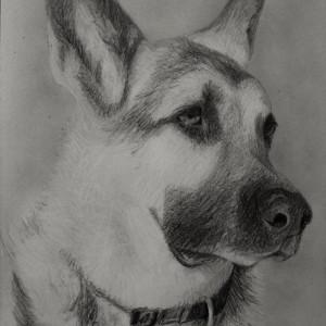 Zeichnung-KD517
