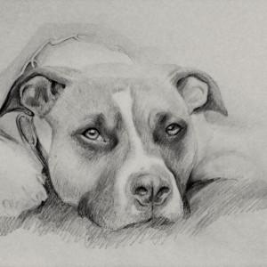 zeichnung-289-3