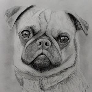 zeichnung-480
