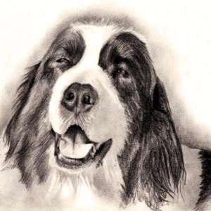 zeichnung-KD189