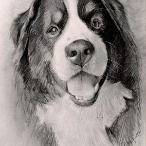 zeichnung-KD469