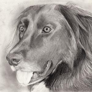 vorschau-zeichnung-1024x726_2
