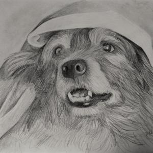 zeichnung-400-2