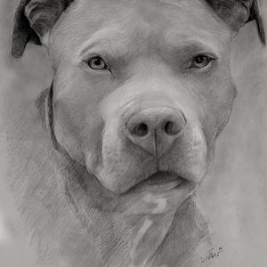 zeichnung-405