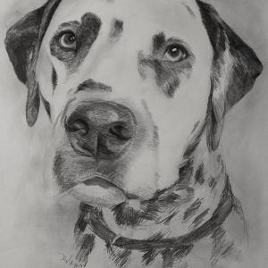 zeichnung-415