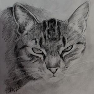zeichnung-249-frieda