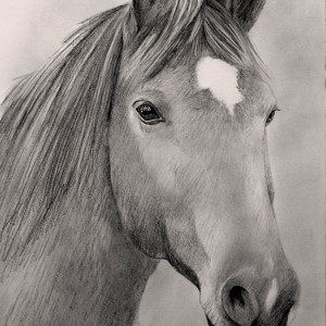 zeichnung-KD493