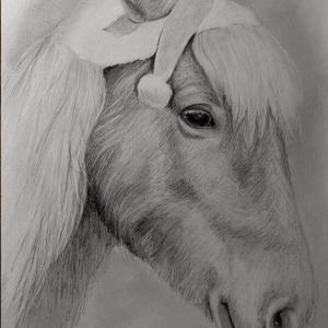 zeichnung-403