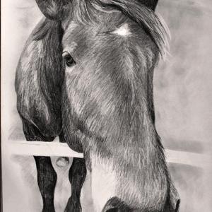 zeichnung-KD191.2