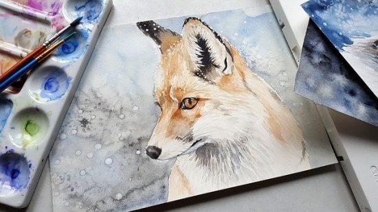 animal-3546613_640