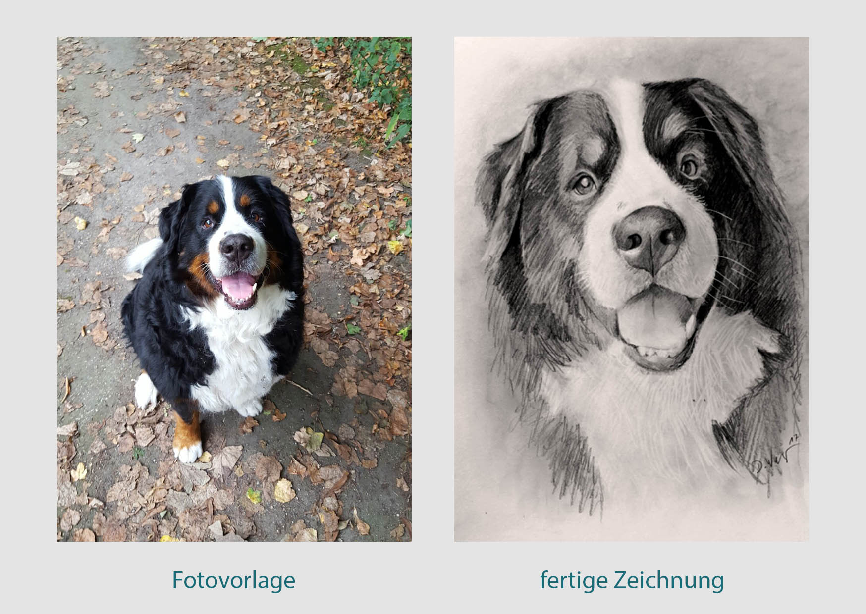 Zeichnung eines Hundes