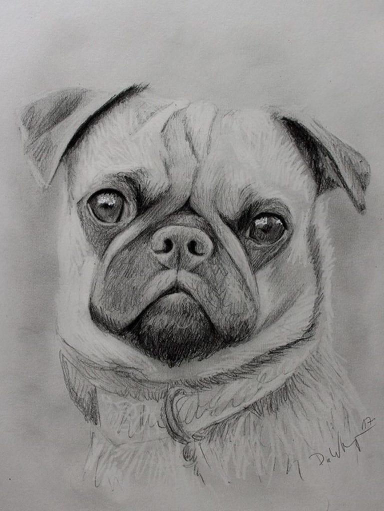 Portrait Vom Foto Zeichnen Lassen Günstig Ab 50 Portraitzeichnung